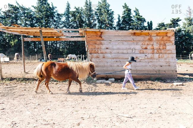 Young girl leading a shaggy horse on farm