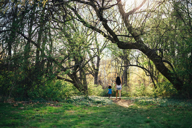 Two children walking together through the woods