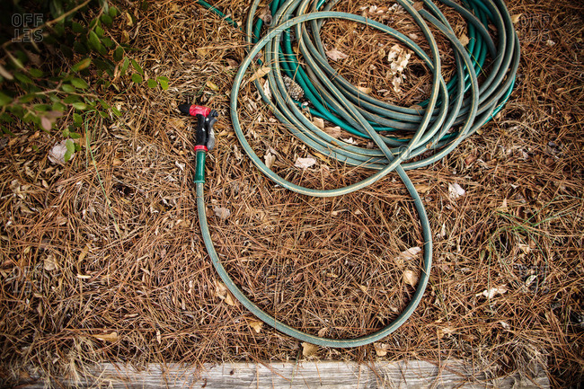 Garden hose with nozzle lying on the ground