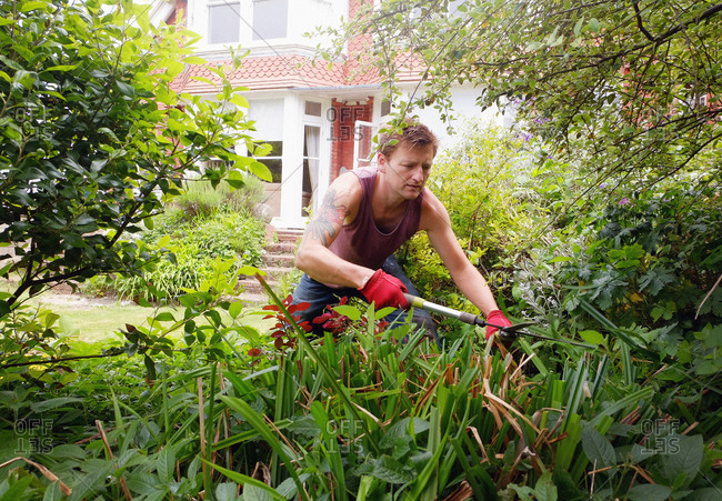 Mature man, gardening, using garden shears