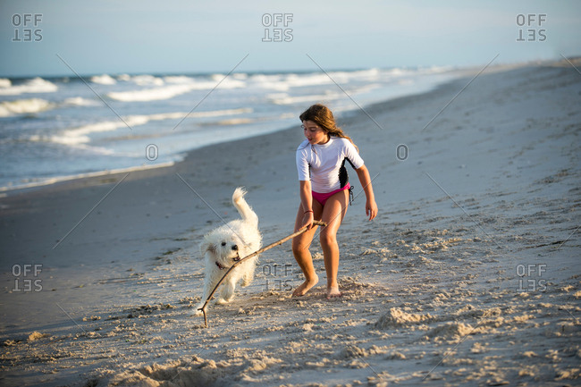 Young girl playing with dog on beach