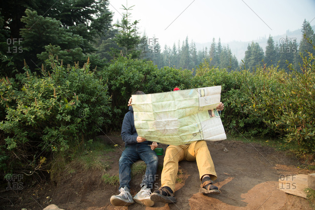 Two young male hikers reading map in forest, Mount Hood National Forest, Oregon, USA