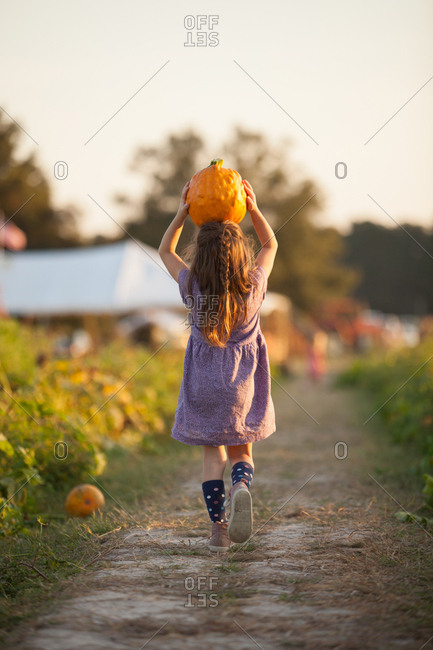 Young girl walking along rural pathway, carrying pumpkin on head, rear view
