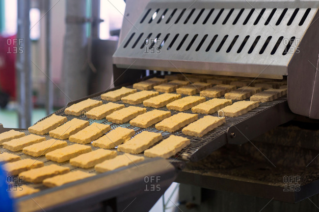 Conveyor belt  with tofu in organic tofu production factory