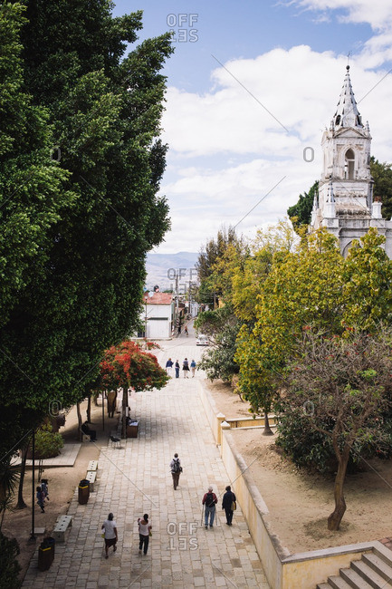 2/10/16: People walking along a tree-lined street in Oaxaca de Juarez, Mexico
