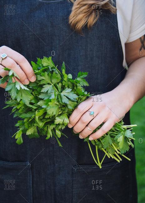 Woman holding cilantro