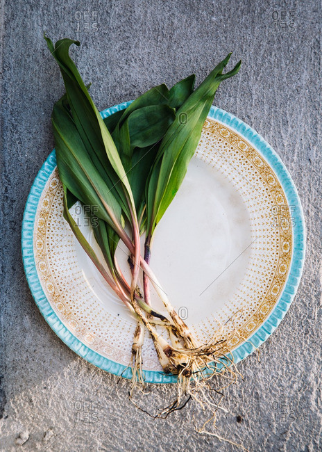 Ramps on a plate