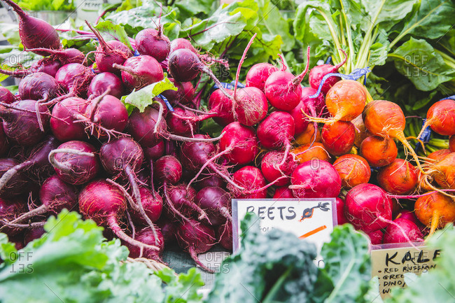 Variety of fresh beets for sale at a farmers market