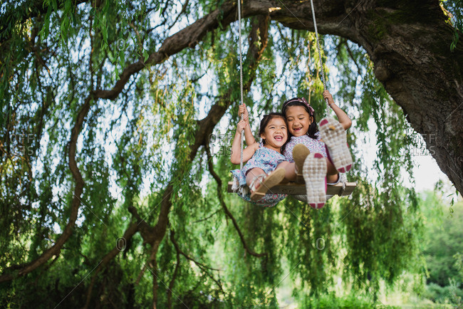 Two sisters sitting together in a rope swing hanging from a tree