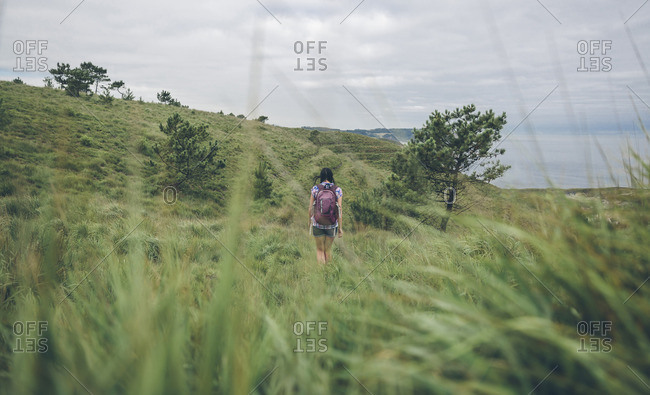 Spain, Asturias, back view of woman with backpack hiking on green hills
