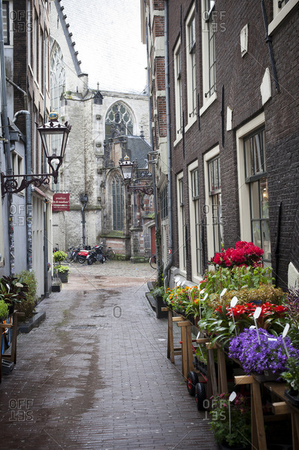 Quaint alleyway of Amsterdam, The Netherlands