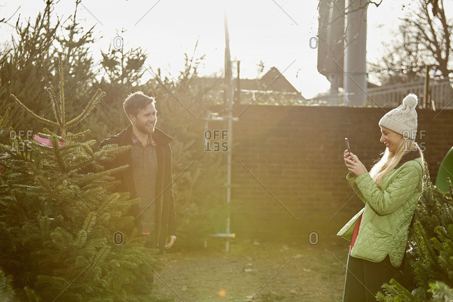 A man and woman choosing a traditional pine tree, Christmas tree from a large selection at a garden center