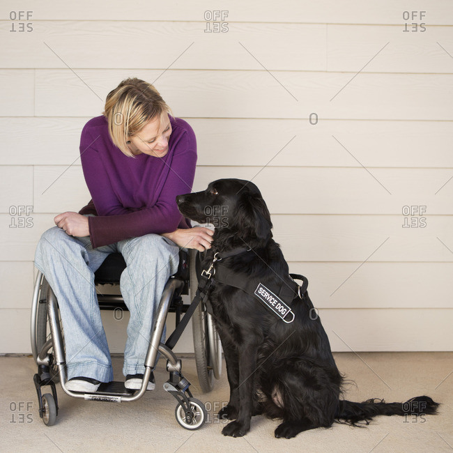 A mature woman wheelchair user stroking her black Labrador service dog and making eye contact with the dog