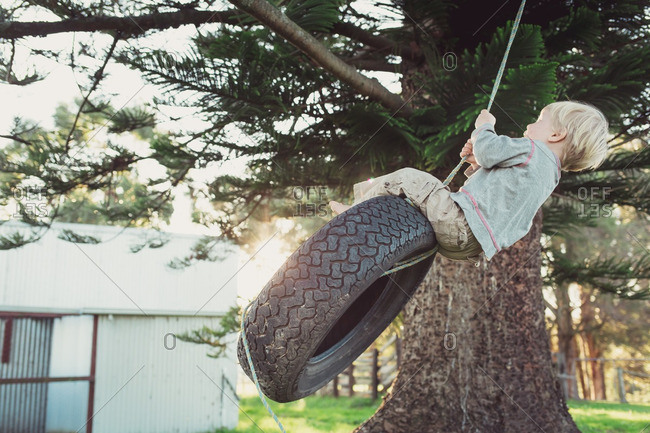 Boy swinging on a tire swing from tree