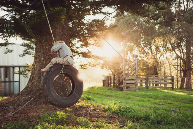 Little boy swinging on a tire swing from tree