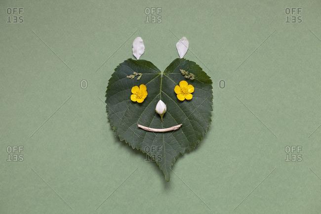 Smiling leaf face - Offset Collection