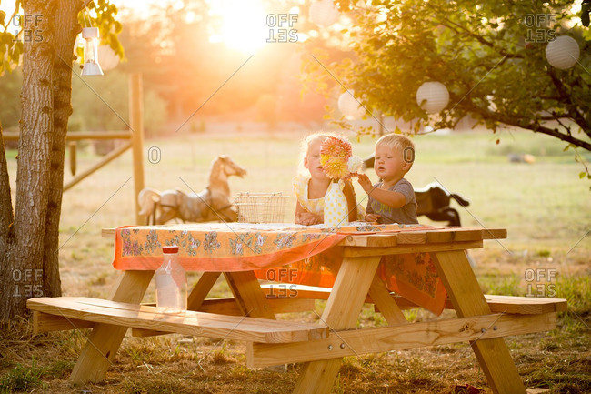 Kids at rural picnic table