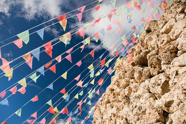 Bunting by rocks