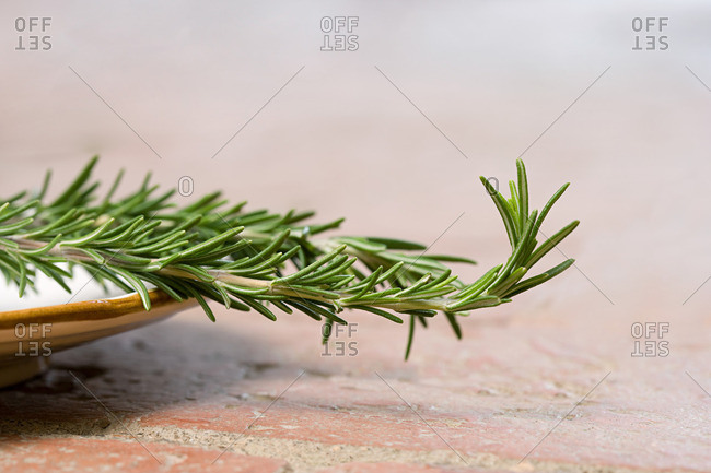 Fresh rosemary on a plate