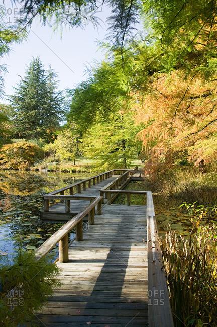 Van dusen botanical gardens Vancouver