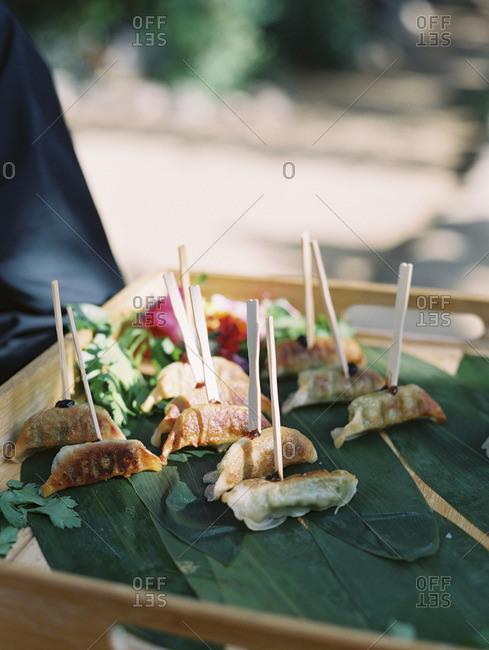 Dumpling wedding appetizers