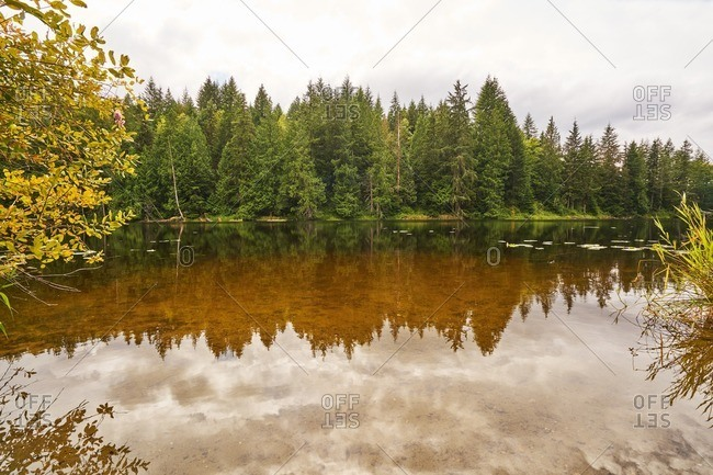 A still lake in Pacific Northwest
