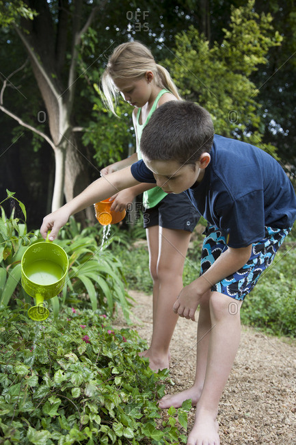 Children (8-9) watering plants in garden
