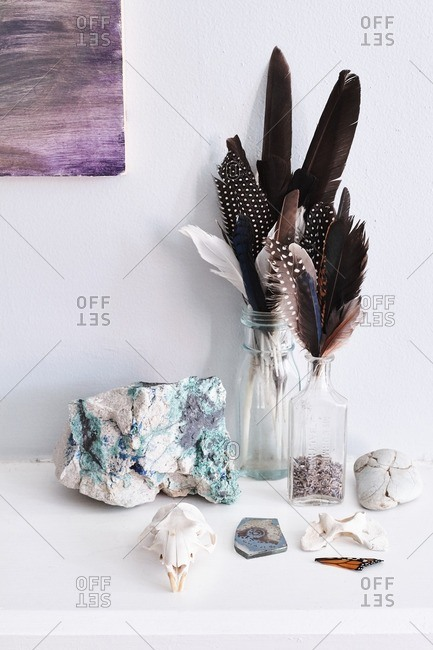 Desk covered with glass jars filled with feathers, bones, stones, and insects