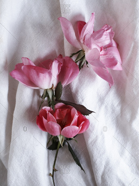 Flowers on a white linen tablecloth