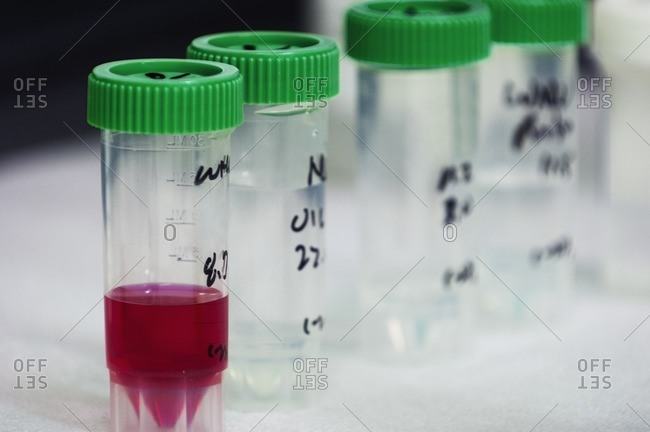 Close-up of containers with liquid on table in laboratory