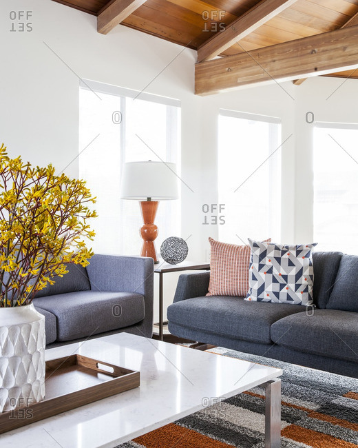Interior of sofas in living room