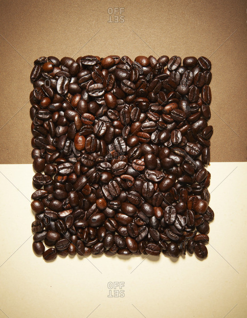 Coffee beans in the shape of a square on a two-tone background
