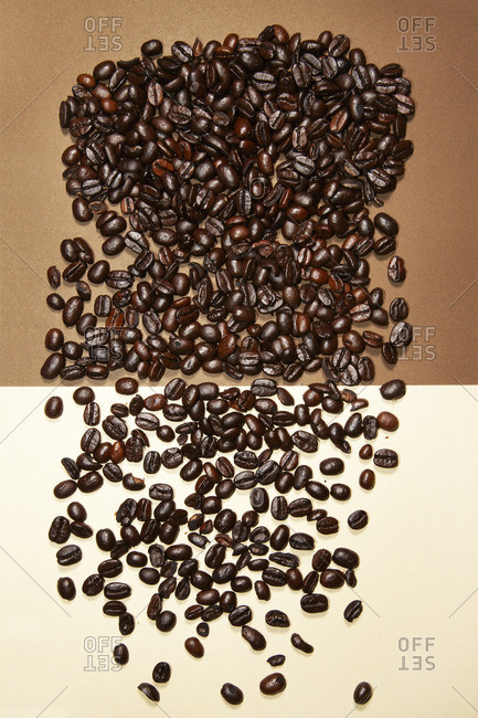 Coffee beans on a two-tone background