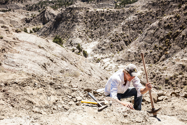Paleontologist using a pick in the field while excavating a site in Utah's Kaiparowits