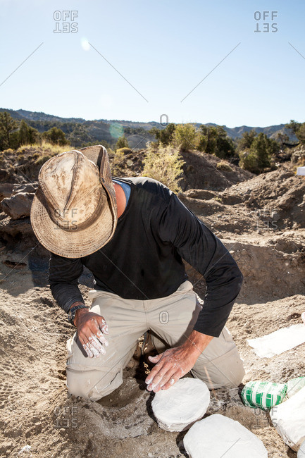 A paleontologist preparing a plaster jacket for a fossil recovered in the field in Utah's Kaiparowits Plateau