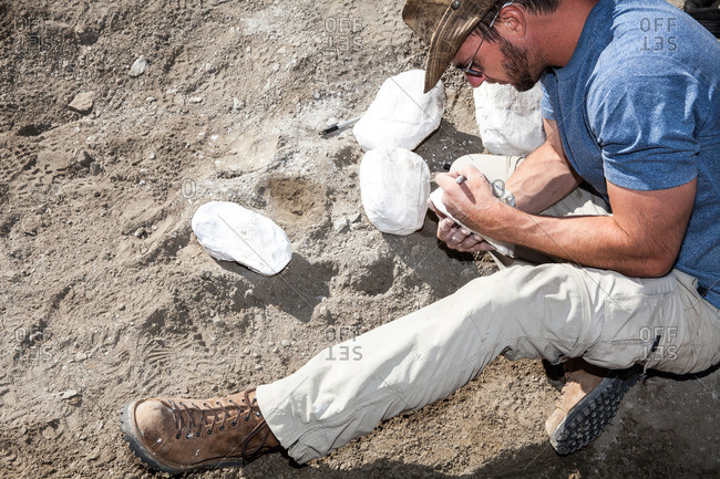 A paleontologist preparing several plaster jackets for fossils recovered in the field in Utah's Kaiparowits Plateau