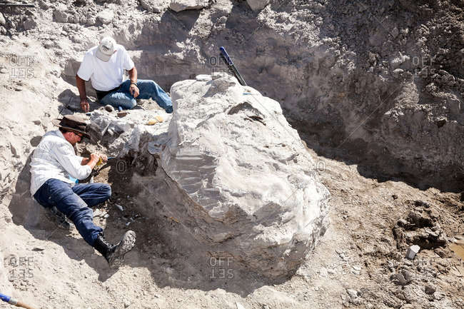 Kaiparowits, Utah, USA - September 18, 2015: Two men work in a quarry together to remove a large fossil in Utah's Kaiparowits Plateau