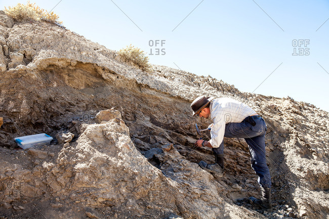 Kaiparowits, Utah, USA - September 19, 2015: Paleontologist using a rock hammer in the field while excavating a site in Utah's Kaiparowits