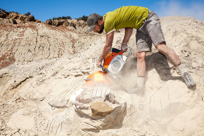 Kaiparowits, Utah, USA - September 20, 2015: Paleontologist sawing with a rock saw in the field while excavating a site in Utah's Kaiparowits Plateau