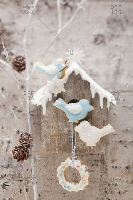 A birds house with bird biscuits