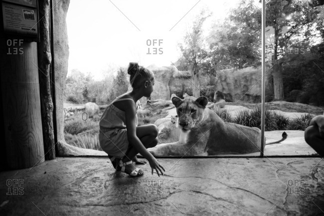 Girl by lion behind glass