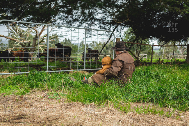 Man and toddler cuddling and watching cattle through farm gate