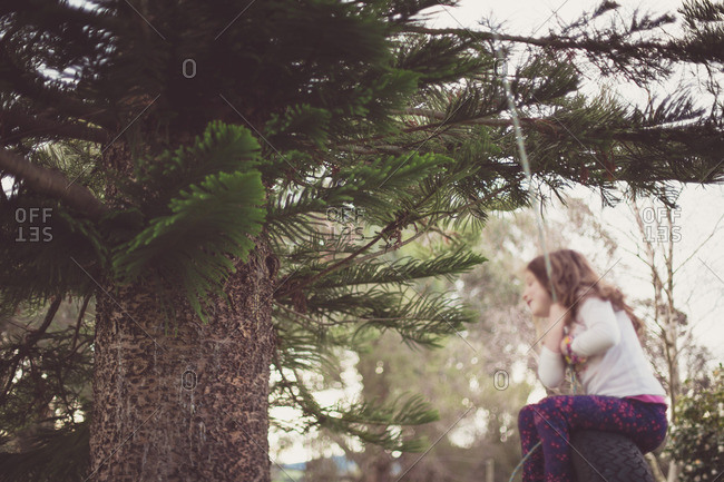 Girl swinging on tree swing