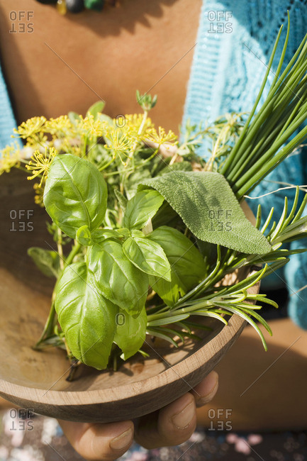 Woman holding wooden bowl with fresh herbs