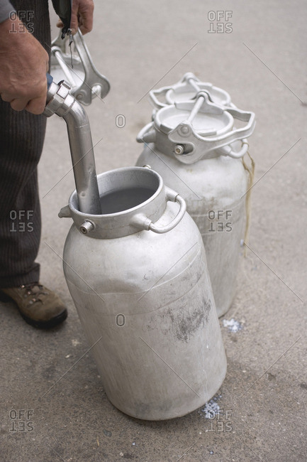 Farmer emptying milk can with a hose