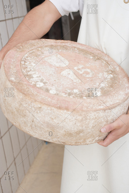 Man holding large cheese (spicy Millennium cheese)
