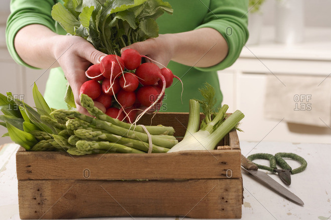 A box of vegetables and a hand holding a bunch of radishes