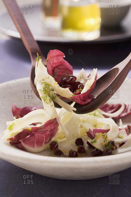 Radicchio salad with pomegranate seeds