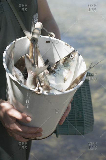 Female angler holding a bucket of freshly caught fish