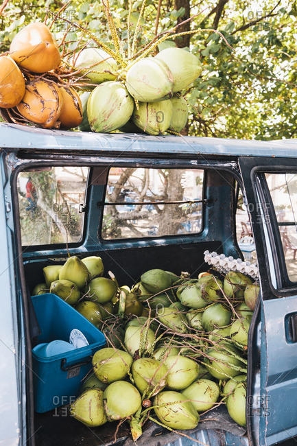 Van filled with fresh coconuts